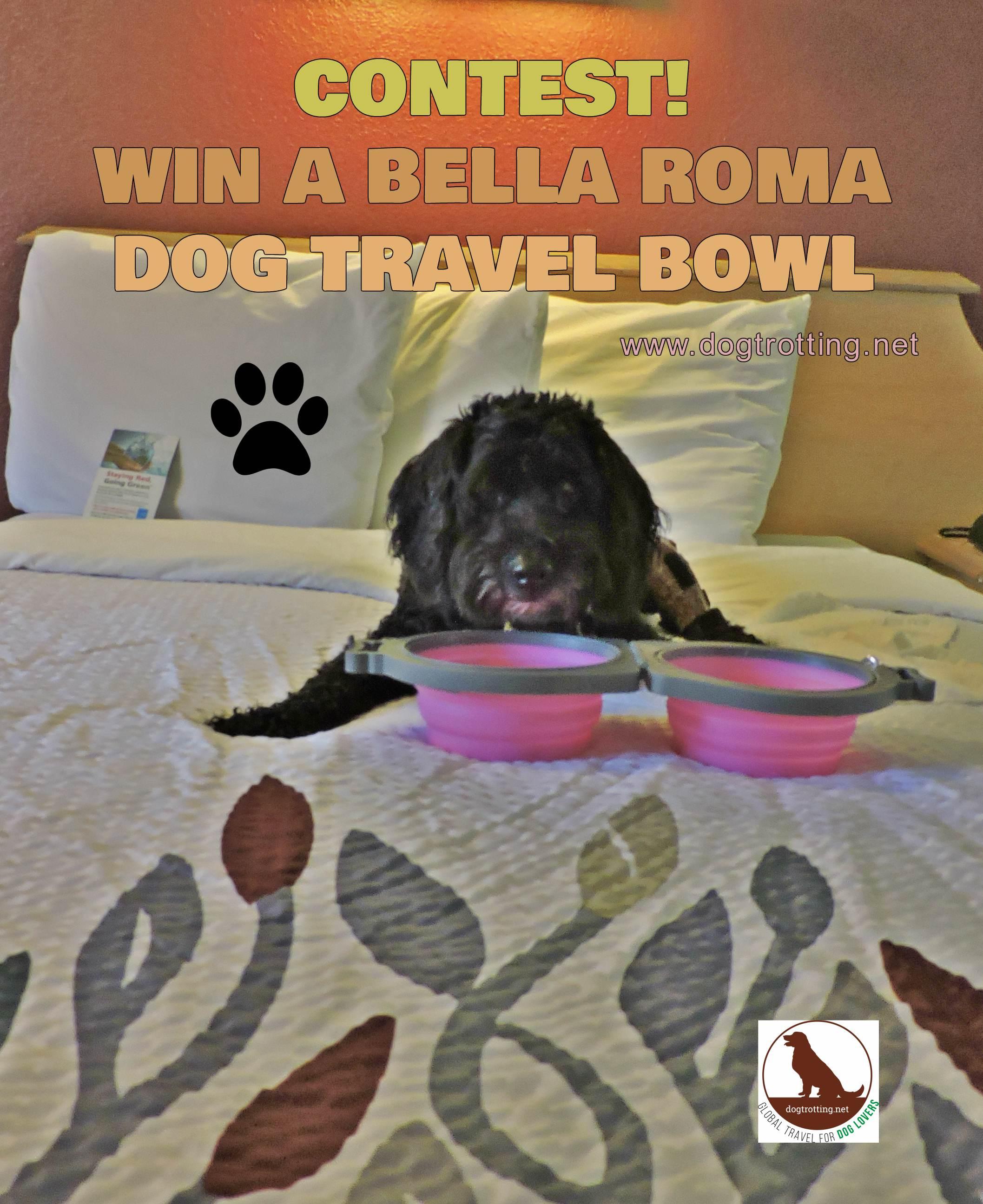 Contest #6: Bella Roma Dog Travel Bowl