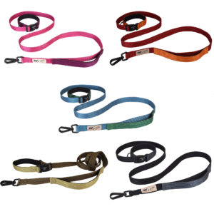 Go-Bodly-Go-Leash-Group-1-300x300