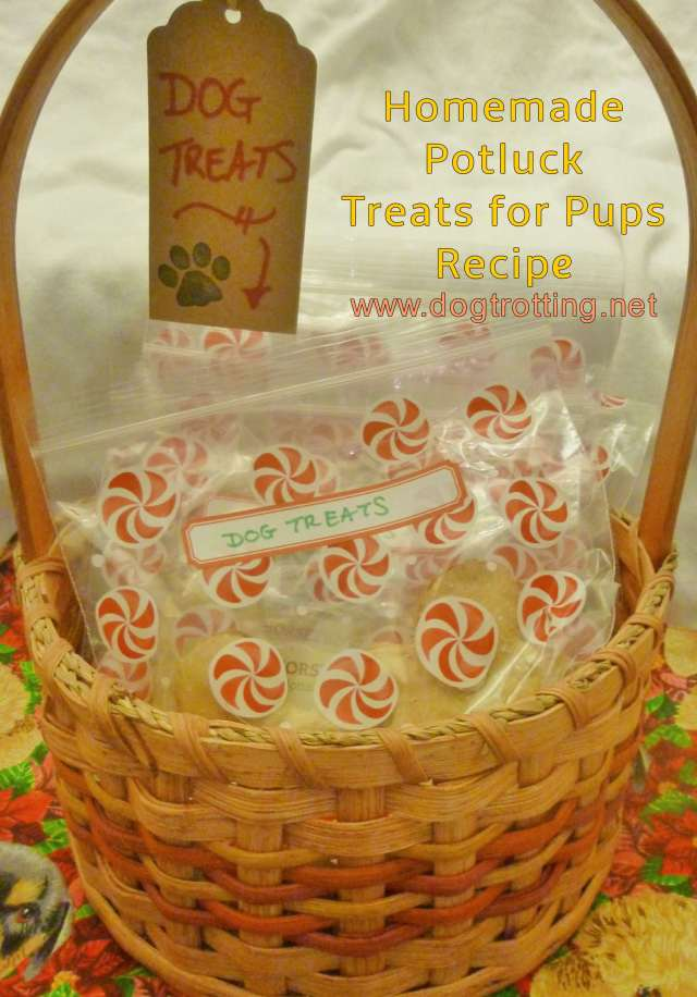 basket with bags of homemade dog treats for potluck