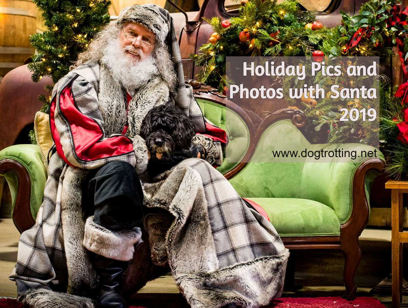 This Little Doggie Meets Santa – Happy Holidays Pet Pics (with earthbath wipes)