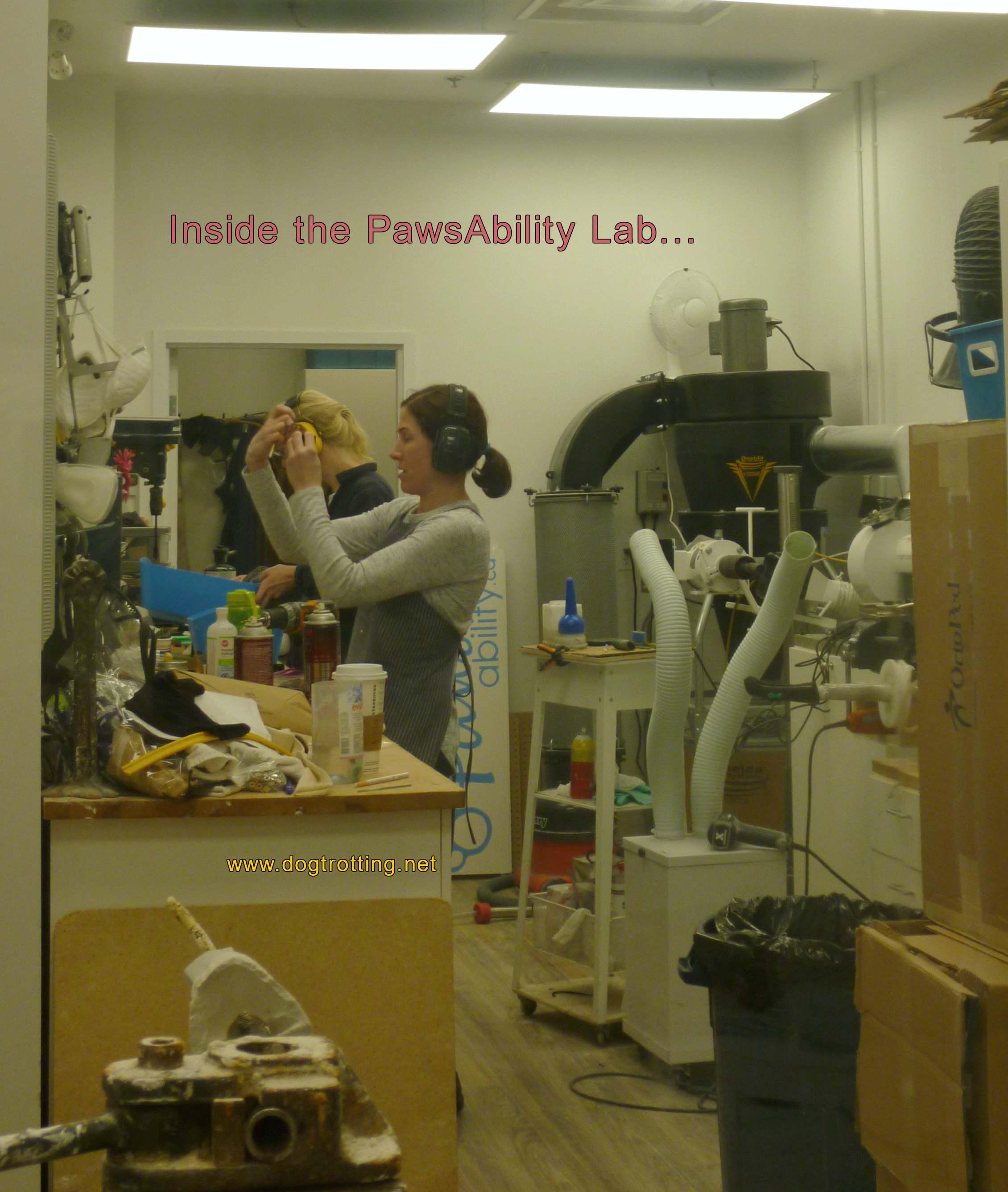 Inside the lab making animal prostetics at pawsability