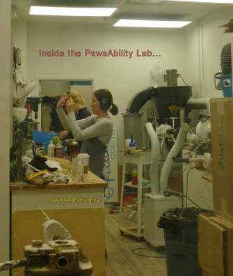 Inside the lab making animal prostetics at pawsability