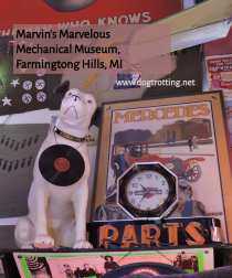 RCA dog statue at Marvin's Marvelous Mechanical Museum