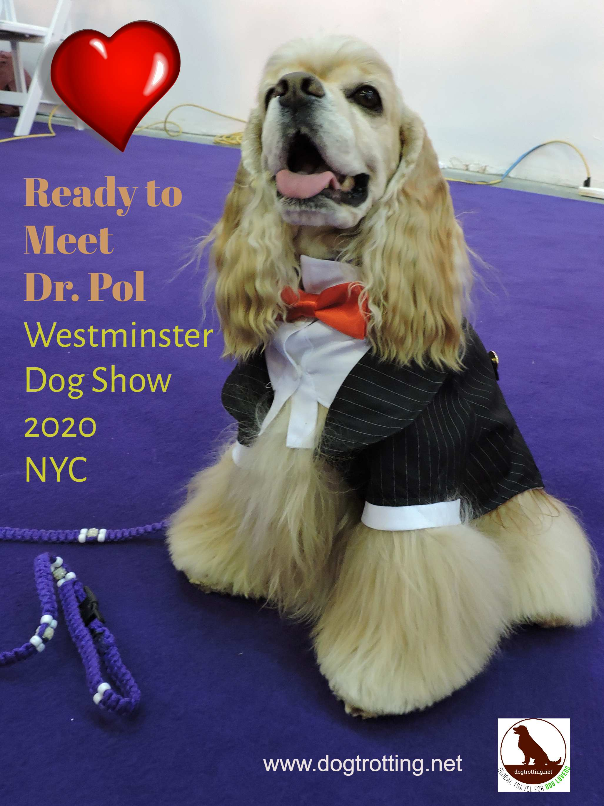 Travel NYC: Meet Dr. Pol at Westminster 2020