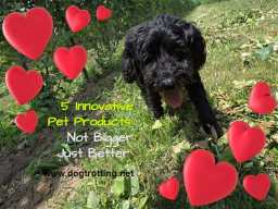 innovative dog products