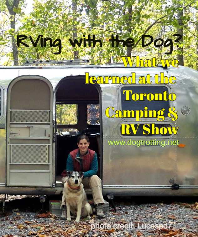 woman with dog in front of RV camper