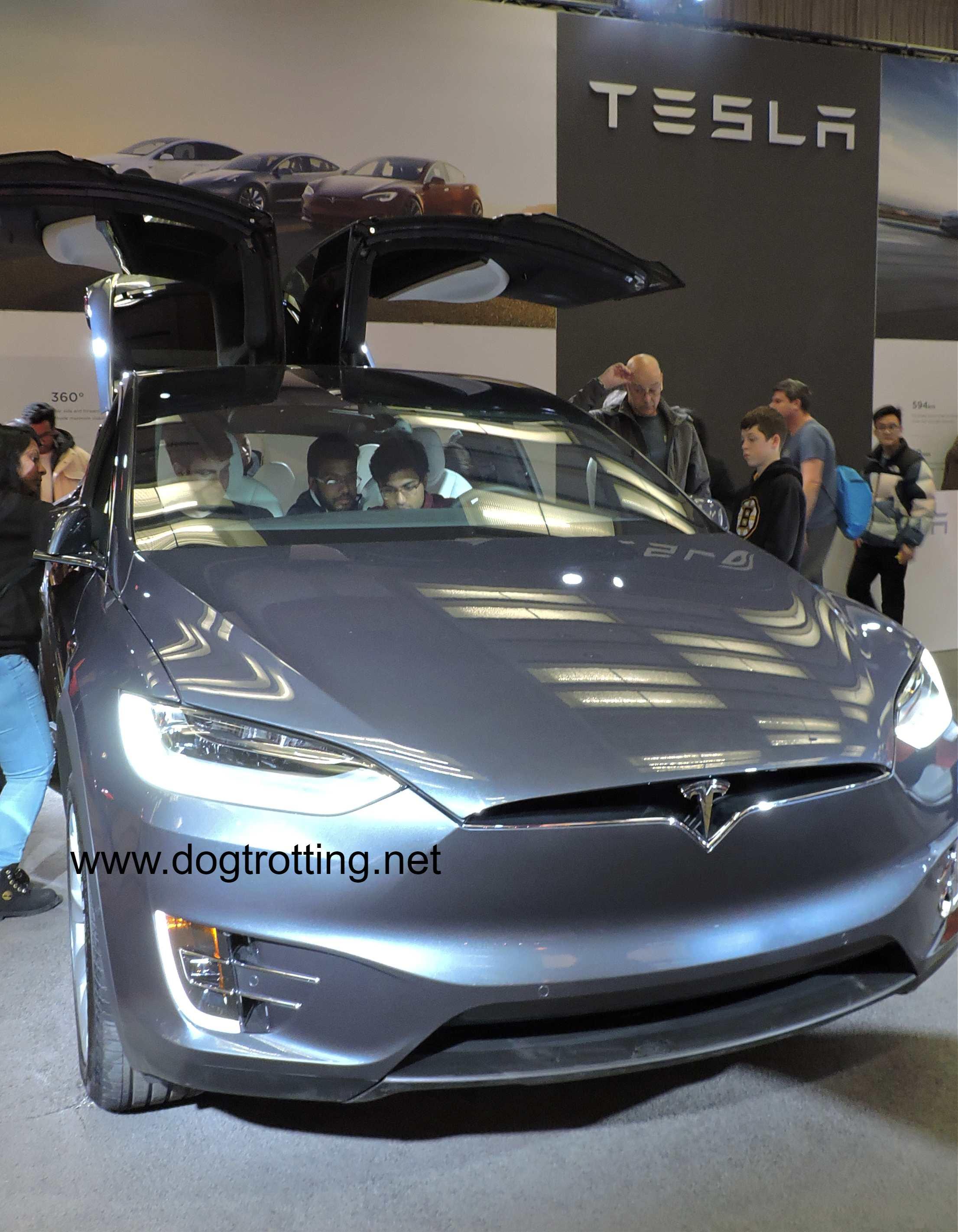 front of grey tesla car