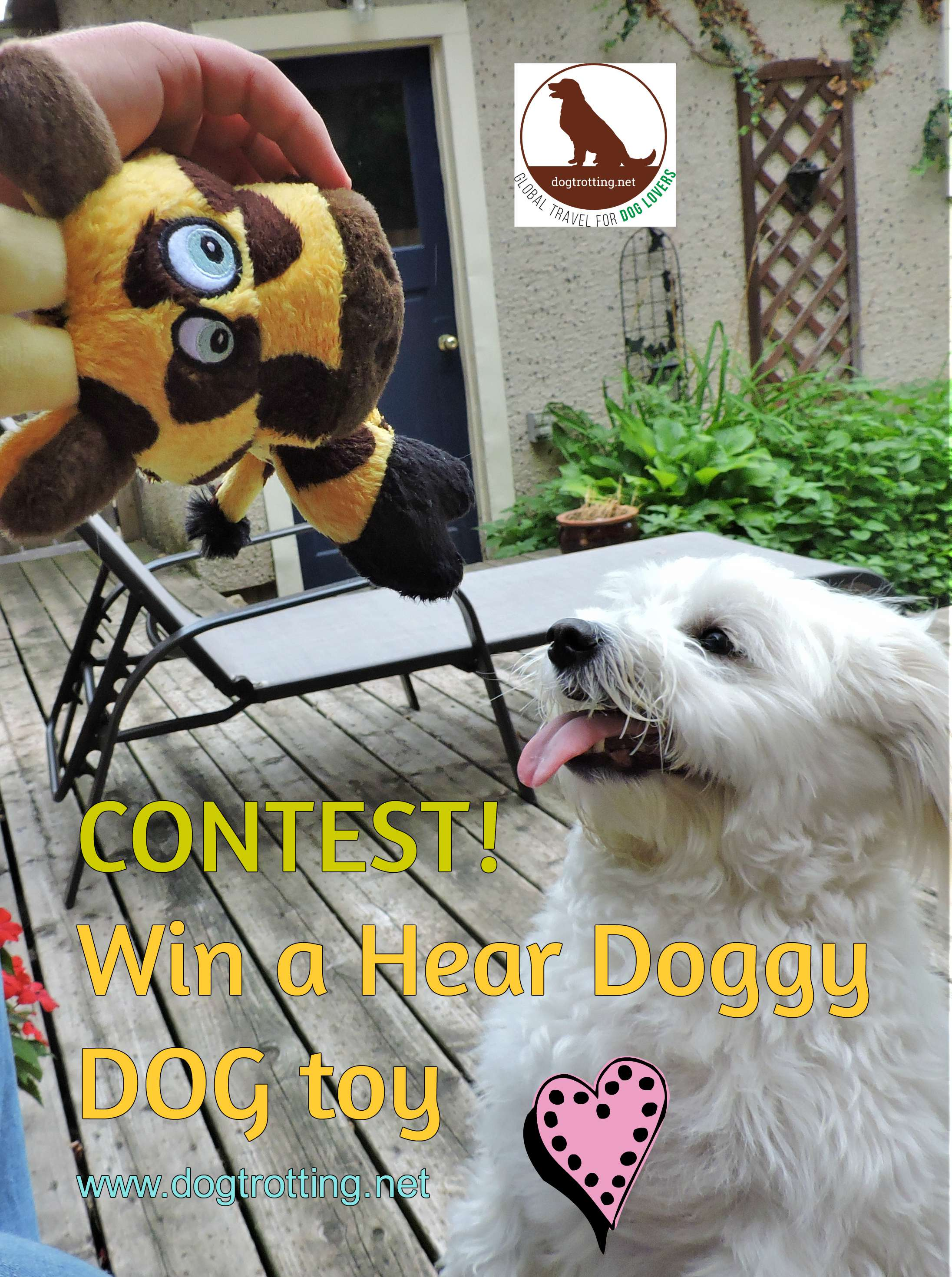 CONTEST! Win a Hear Doggy silent squeaky toy