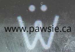 logo for pawsie.ca