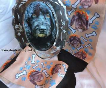 dog photo in frame with custom print dog socks from Printsfield