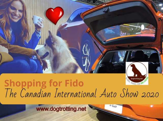 Orange Golf at Canadian International Auto Show 2020 with text: Shopping for Fido at the Canadian Internationl Auto Show