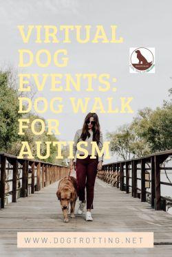 dog and woman walking on bridge