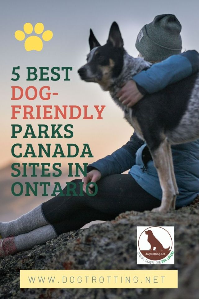 woman on mountain with dog promoting text: 5 Best dog-friendly parks canada sites in Ontario