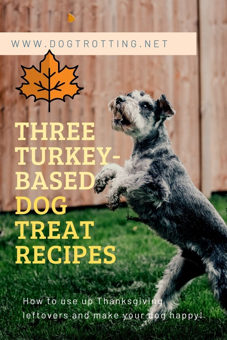 Recipe: Canadian Thanksgiving Turkey Dog Treats